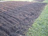 капаем уборка огорода