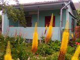 Продаем дом-дачу 30м2 на 6 соток земли, в дачном кооперативе,рядом с селом Оницканы в 300м.от трассы
