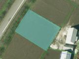 Продаем земельный участок 10 сот  под строительство жилого дома в Будештах!До Днестра 4 км!