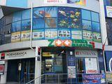 Магазин ZOOTERRA - лучший в городе выбор аквариумов, техники, кормов и декоративных рыбок..