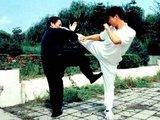 Wing Chun Kung-Fu ( китайский бокс) Вин Чун Кунг-Фу