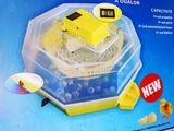 Incubator Semi automat romanesc CLEO 5DTH+ cu garantie 1 an si cu livrare gratuita