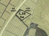 Участок у дороги (Полтава) !!! La traseu ! Vind teren linga padure1.35ha   700 euro/arul