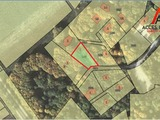 Lot de teren, zonă de elită, pe malul lacului ghidighici,in padure 9 ari, or. vatra!