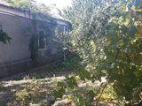 Дом-90кв. + 2-а участка-2 га, с. Долинное - 40 000 euro