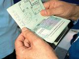 Шенгенские Визы 6-9-12 месяцев,  Viza Schengen