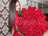 101 trandafiri /5 lei bucata !!!