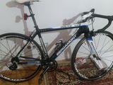 bicicleta Bergamont dolce carbon