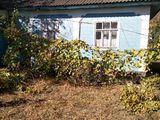 Продается дом - С. Братушаны, р. Единцы / Se vinde casă - satul Brătușeni, r. Edineț