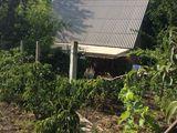 Внимание! Продается дачный участок с домом недалеко от Днестра! Есть все! Обязательно стоит увидеть!