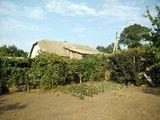 продаётся дом / Casa pe pamint 1200 m2