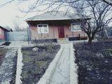 vindem casa satul cobani