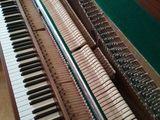 Acordor de piane. Настройщик фортепиано.