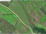 Teren arabil 1.81 ha, or. Hincesti pos.la schimb