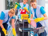 Услуги по уборке Средства и техника наши Профессиональное оборудование