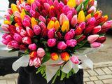 Тюльпаны, букеты из тюльпанов,  Бельцы