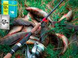 Dry Blooder (Сухая кровь). Эффективен для любой рыбы