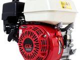 Motoare motobloc 6.5-7 c.p