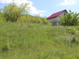 Lot agricol, 3 ha, Trușeni, urgent!