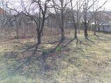 Teren in Dumbrava 617 m2