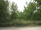 Urgent si Eftin 6 sote sub Constructie,satul Pelivan,r-l Orhei,la 2000 eu.