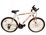 Biciclete pentru toata familia. Велосипеды