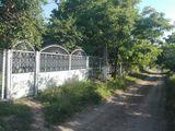 Se vinde casă în satul Obreja Nouă.