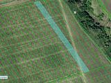 160 hectare teren arabil, consolidate 100 % - posibilitate de procurare in rate...