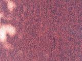 палас красный 2,25 м = 3,35 м 450 лей площадь 7,5 м
