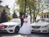 rentmercedes.md - Chirie/прокат Mercedes albe/negre (белые/черные)