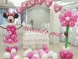 Decor din baloane! REDUCERI Baloane cu heliu de la 13 lei! Articole pentru sarbatori! Fotostand - Фо