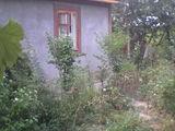 Дача село Бык