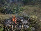 Уборка территорий!Вырубка деревьев!Вывоз!