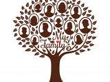 Провожу генеалогические исследование, составляю семейное древо
