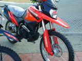 Viper 300cc