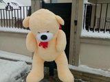 Urs de plus 130 cm la doar 900 lei + Baloane cu heliu cadou !!!