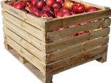 Возьму контейнеры для яблок в аренду - большое количество
