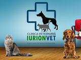 Clinică și farmacie veterinară
