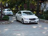 Lux Mercedes-Benz albe/negre nunti/delegatii - 15 €/ora & 79 €/zi