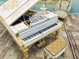 Invatator de pian