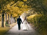 Элегантное свадебное платье/ Rochie de mireasa eleganta