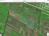 Vind 20 ha teren arabil la 2 min de traseul Chisinau-Aneni