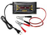 Incarcator pentru acumulator, зарядка для аккумуляторов / Pompa electrica, автонасос