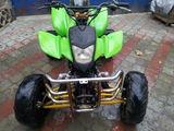 Bashan 250