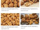 Аренда  ореховой посадки