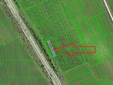 Teren Agricol - 1,5 ha, linga traseu, Gratiesti