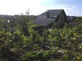 Дом, дача Кишинев Кодру общая площадь 102 м2 9 соток все удобства 38000 евро