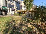 Cafenea-Bar plus terasa str Mircea cel Batran