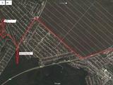 "Vind teren pomicol in IP ""Meliorator"",la periferia Truseni,8,5 ari"