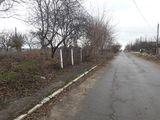 Traseu asfaltat, teren în vânzare, 20 ari cu numai 14900 €